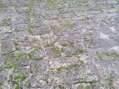 Foto particolare del piazzale in pietra di Paestum prima dei lavori di restauro (1)