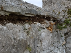 Foto particolare delle murature intorno al piazzale in pietra di Paestum. (6)