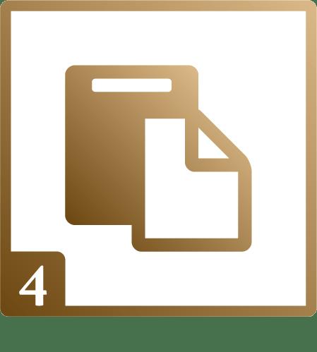 relazione_sorveglianza_territoriale_icon