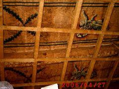 Conservazione Restauro Tela Neoclassica Soffitto10